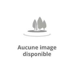 Cytozyme F Biotics Comp 60